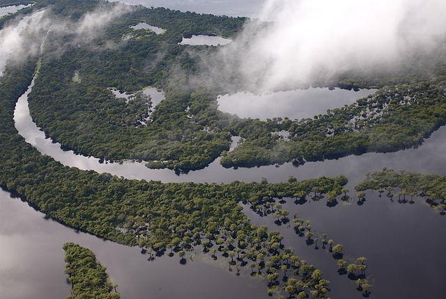 640px Anavilhanas1 Ecotourism