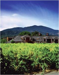 organic wines 238x300 ORG5