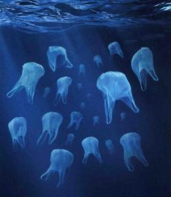 rise above plastic2 779844 Paddlemen In Plastics Gulf Stream Challenge